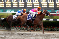 """Ruler On Ice"" winning the 143rd Belmont Stakes"