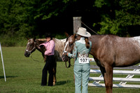 Woodstock New York Horse Show
