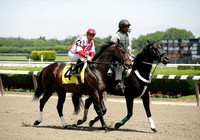 Thoroughbred Racing from Belmont