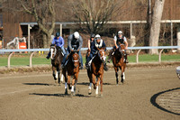Thorougnbred Racing Action from Saratoga Race Course