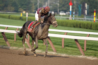 """Jackson Bend"" wins the 2011 Forego Handicap"