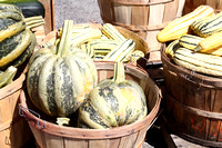 Striped squash at farmers market